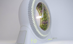 Grow a halo of herbs and vegetables in The Green Wheel