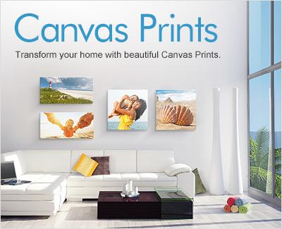 canvas-cat-main-au