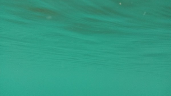Samsung Galaxy S4 Active - Shot taken underwater - sure, boring, but its UNDER THE WATER!