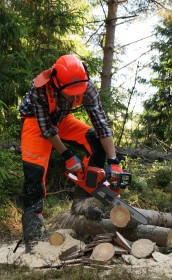 Battery powered chainsaw in action