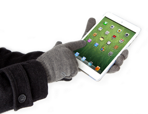 Digits_iPad_mini_1_pr