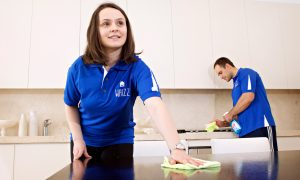 Taking a WHIZZ through your house – cleaning up where you don't want to