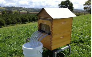 Innovative Bee Hive wins Good Design award for 2016