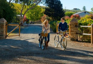 clare-valley-cycling