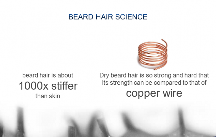 beard-hair-science1